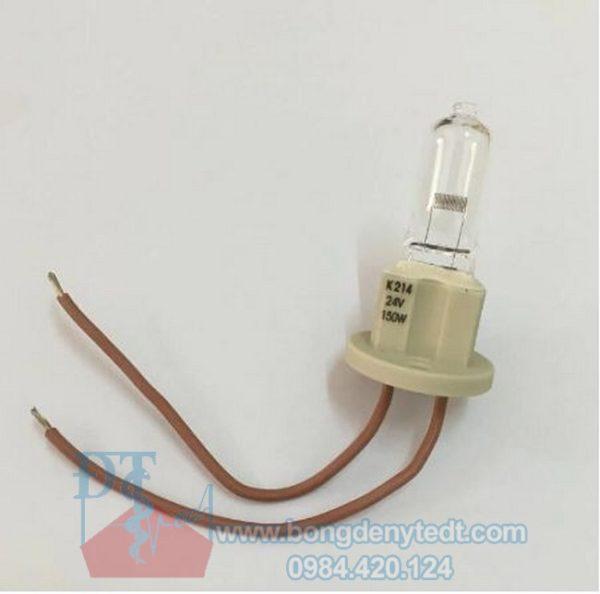 Bóng đèn ghế nha khoa Kavo 24V 150W